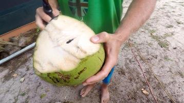 coco hole