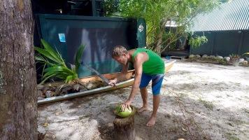 cut coco